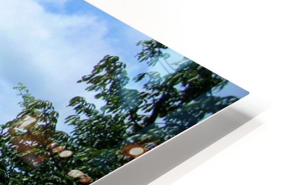 Landscape3 HD Sublimation Metal print