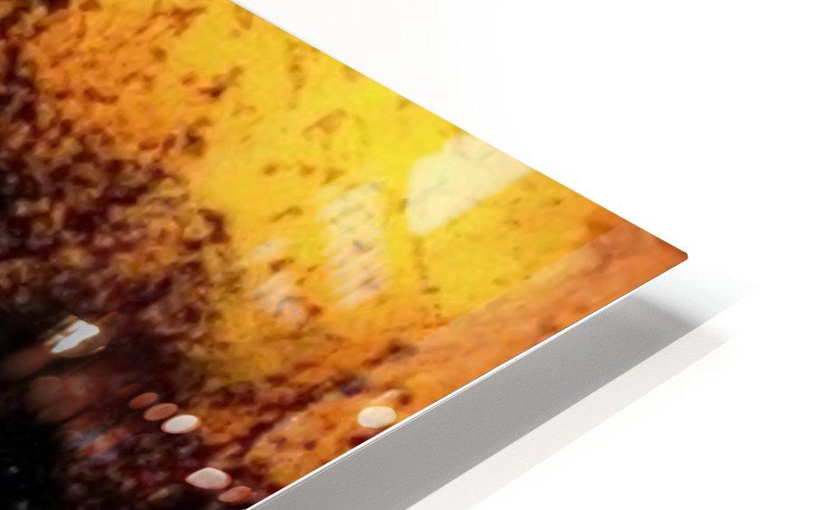 Tigress HD Sublimation Metal print