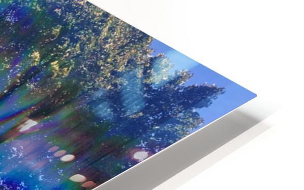 Canopy Gateway HD Sublimation Metal print