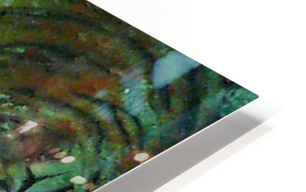 1540821298716~2_1540938414.69 HD Sublimation Metal print