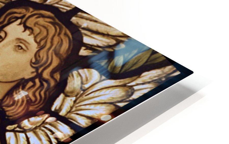 Edward Burne Jones 26 HD Sublimation Metal print