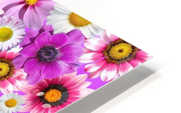 Beautiful colourful flower blossom flower background design floral home decor decoration  HD Sublimation Metal print