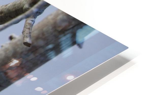 Bundled Up HD Sublimation Metal print
