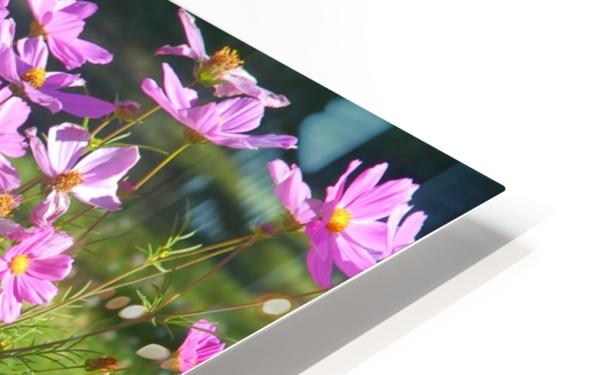 Alaskan Bouquet HD Sublimation Metal print