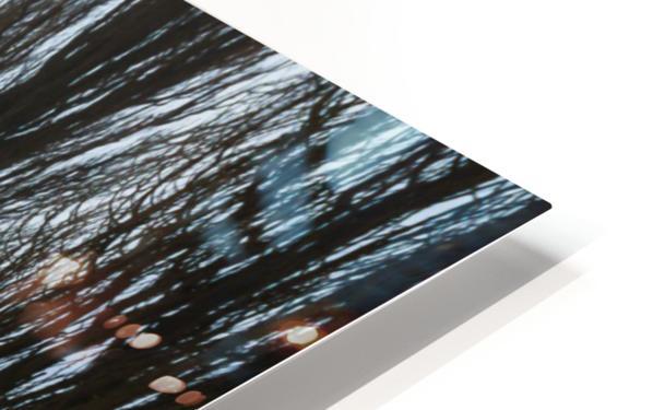 Symetric walk path in fog HD Sublimation Metal print