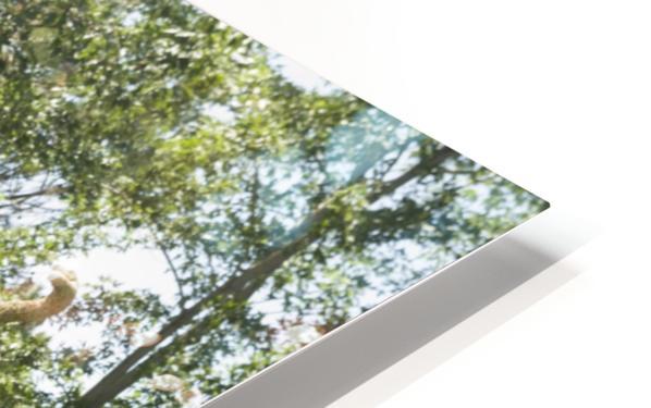 MosaïCanada 150 Display 5 HD Sublimation Metal print