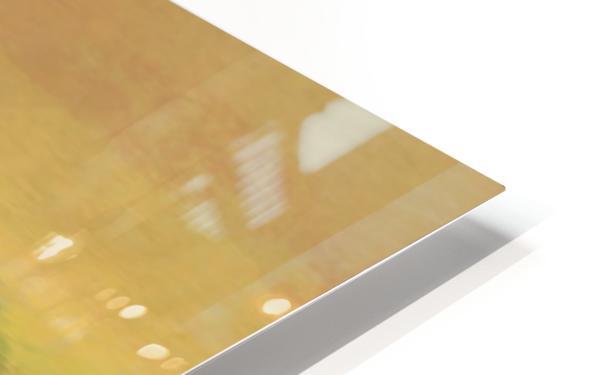 42BEF582 985D 4269 874B 17475ACA9A8E HD Sublimation Metal print