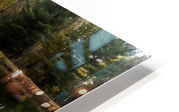 FALL RETREAT HD Sublimation Metal print