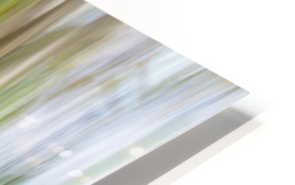 Moving Trees 30 Landcape 52 70 200px HD Sublimation Metal print