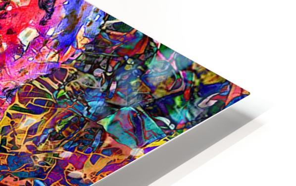 Divertido Ganesh  HD Sublimation Metal print