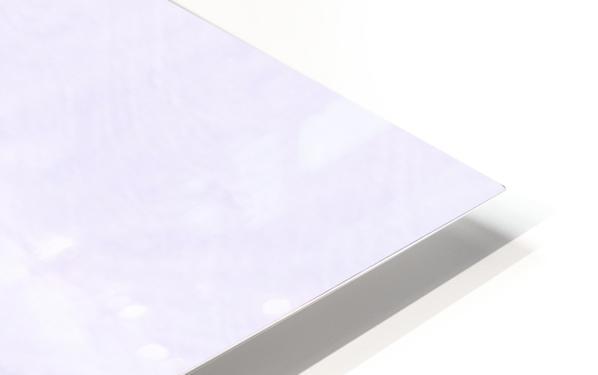 C9F242E9 C252 4395 BD45 CBF046E65DCE HD Sublimation Metal print