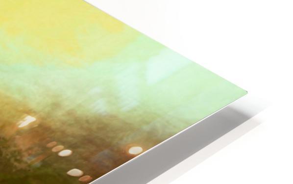 CB81070E 3498 4A4D BB09 499337C220E3 HD Sublimation Metal print