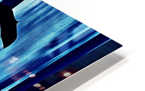 20 HD Sublimation Metal print