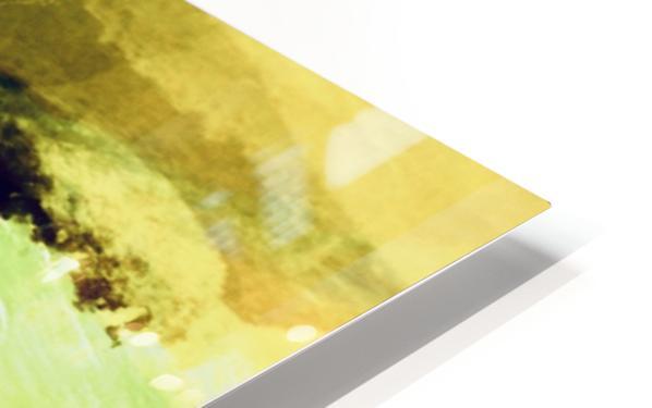 25814507 5B93 40B2 98A4 A495759B64A7 HD Sublimation Metal print