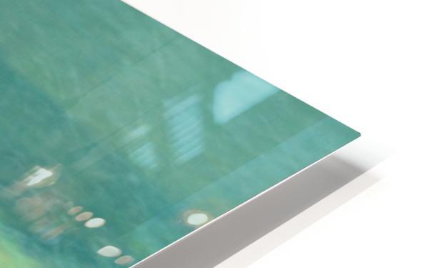 DC53C77E C518 4396 BA5A 0110D0119C49 HD Sublimation Metal print