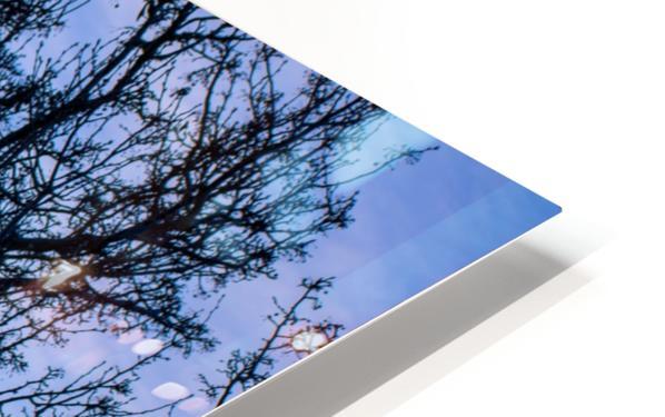 20190101 DSC_0107 HD Sublimation Metal print