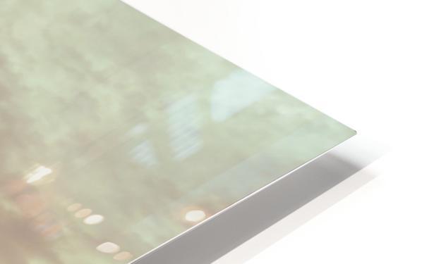 20190212 IMG_3260 HD Sublimation Metal print