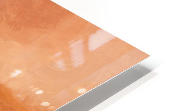 E4D42F68 579F 45EE 9039 8E3E2A9AC927 HD Sublimation Metal print