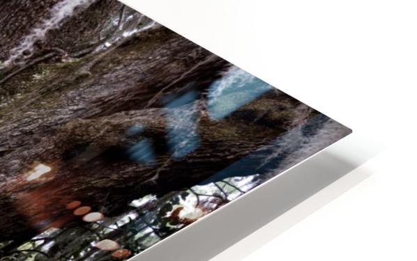 Hello Bubba HD Sublimation Metal print