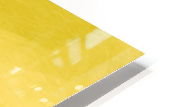 BB264612 CAFA 4D5A AF97 6A8DB295C15A HD Sublimation Metal print