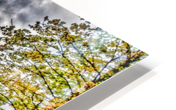 Highland Park 12 HD Sublimation Metal print