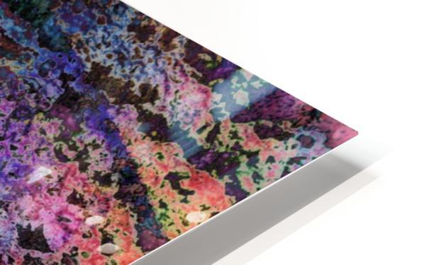 Paw Prints Soft Colours HD Sublimation Metal print