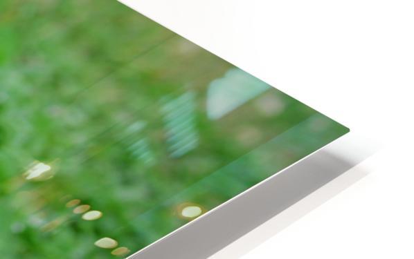 IMG_0007 HD Sublimation Metal print