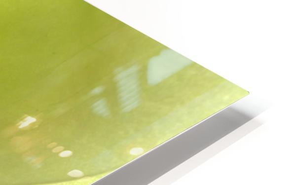 1 IMG_9153 HD Sublimation Metal print