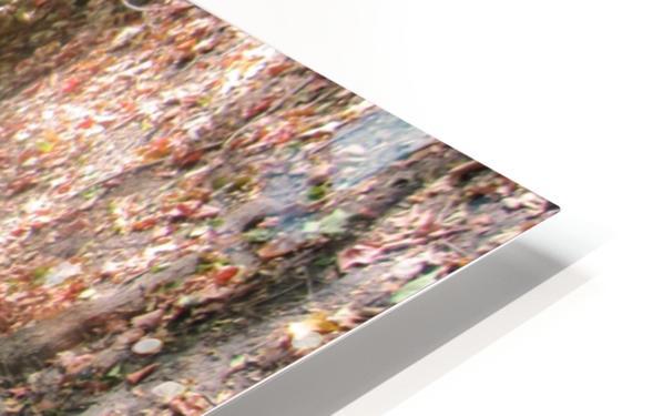 Landscape (60) HD Sublimation Metal print