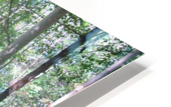 Landscape (166) HD Sublimation Metal print
