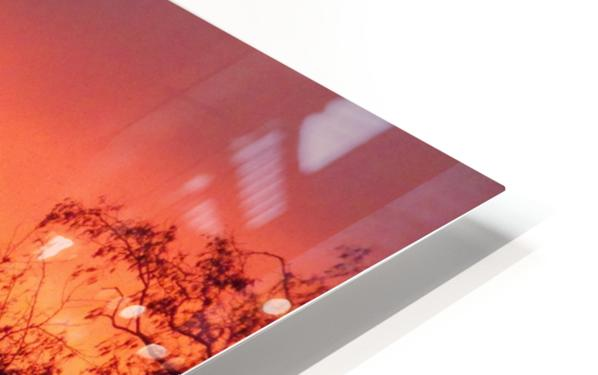 Sunset 1 HD Sublimation Metal print