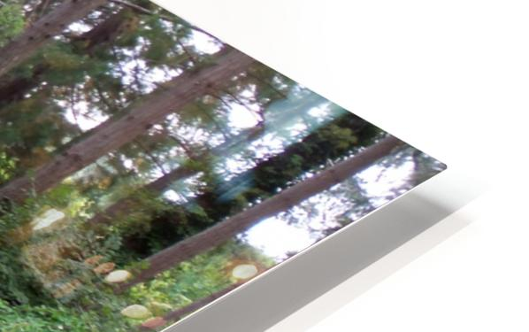 Glendale Gardens Victoria BC HD Sublimation Metal print