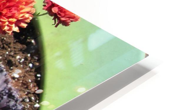 Flower (4) HD Sublimation Metal print