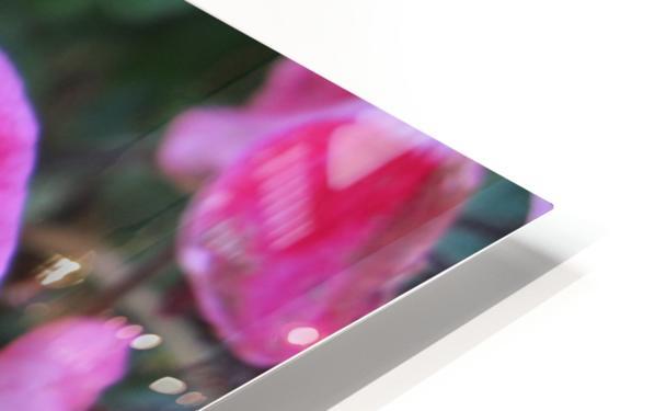 Flower (2) HD Sublimation Metal print