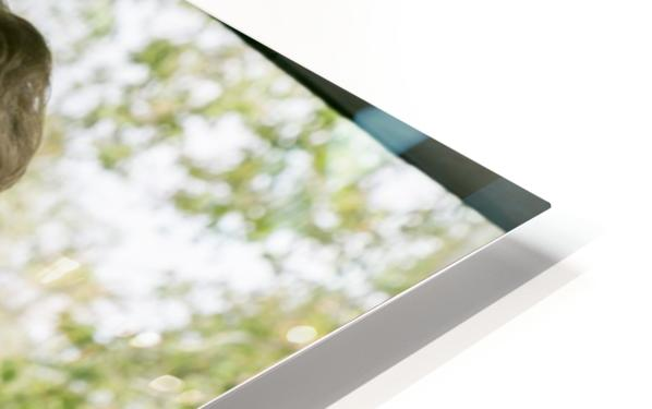 IMG_1567 HD Sublimation Metal print