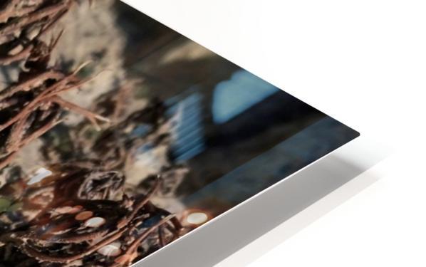 Ox HD Sublimation Metal print