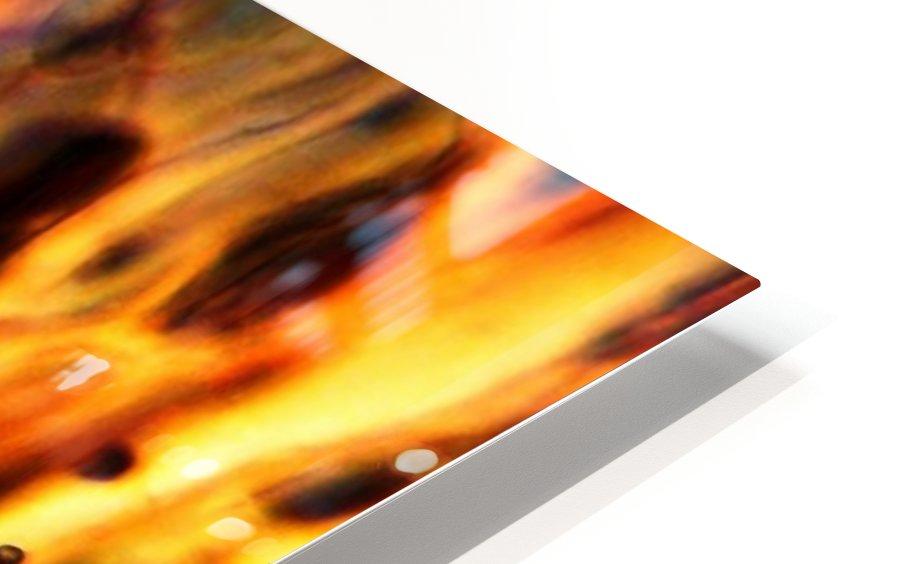 Fire Woman HD Sublimation Metal print