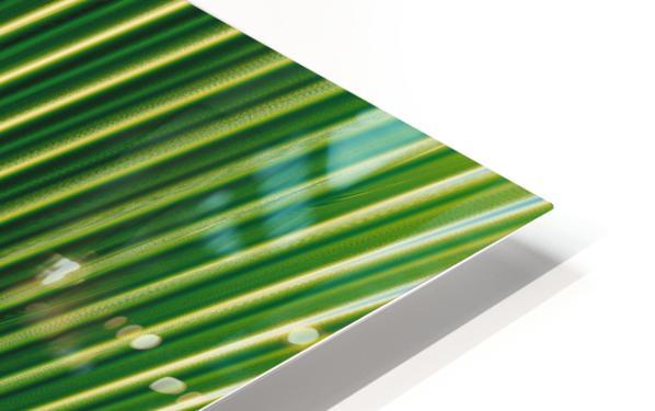 Cool Design (42) HD Sublimation Metal print