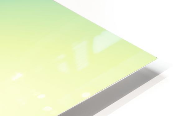 COOL DESIGN  (6) HD Sublimation Metal print