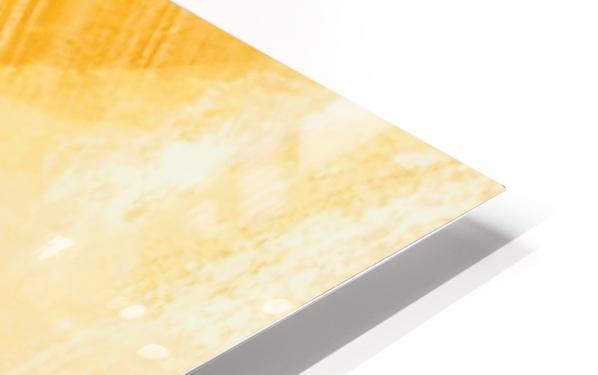 B9EF692F 48F0 4FA0 A267 6C75F478E0CC HD Sublimation Metal print