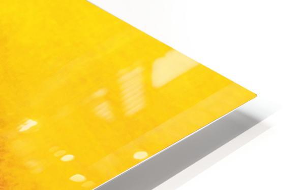04A68722 2841 4C9D AB3C 202DB397986E HD Sublimation Metal print