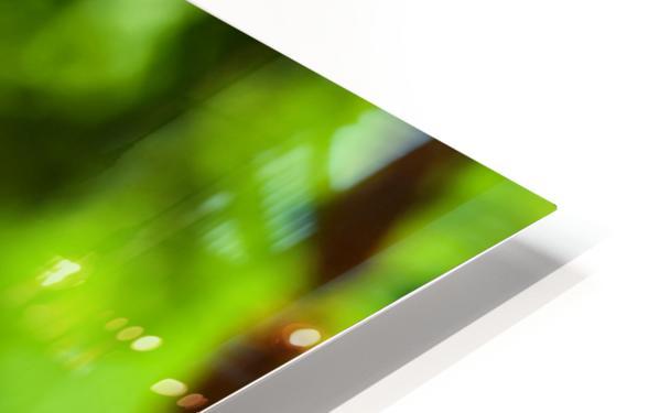 Color Clash HD Sublimation Metal print