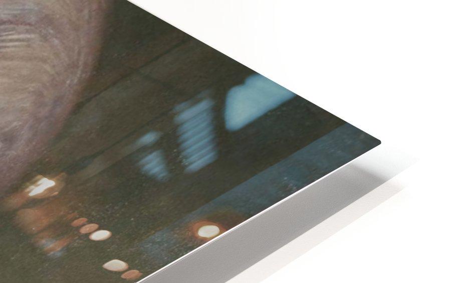 Lewis HD Sublimation Metal print