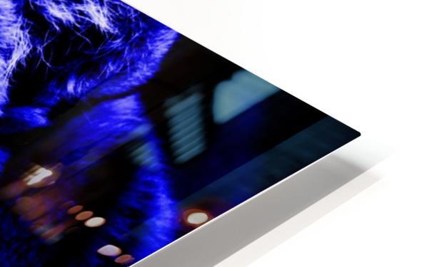 Tiger pop blue HD Sublimation Metal print