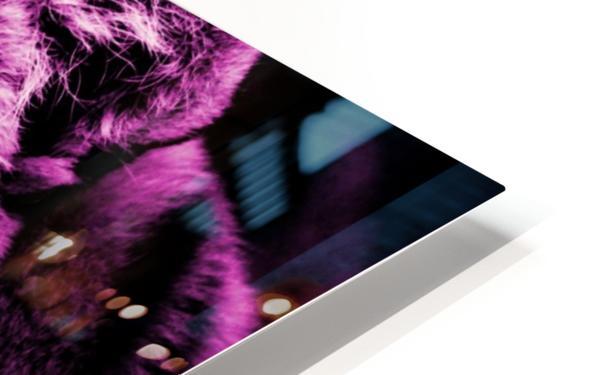 Tiger pop pink HD Sublimation Metal print