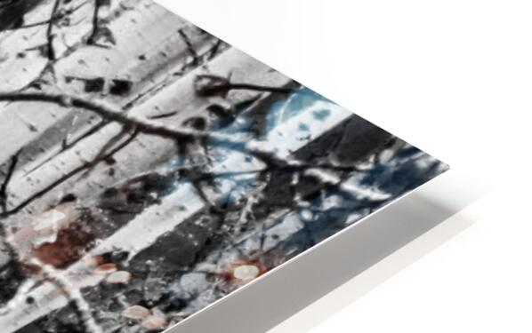 Birch Tree Forest HD Sublimation Metal print