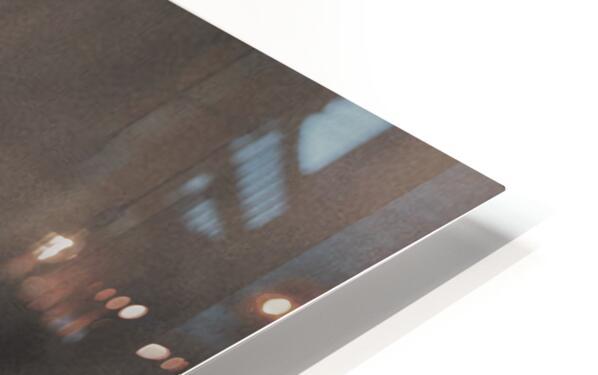 Late Season Dandelion 2 HD Sublimation Metal print