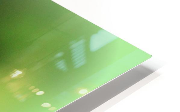 libellule HD Sublimation Metal print
