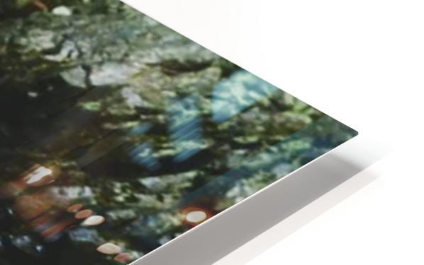 Rocky HD Sublimation Metal print