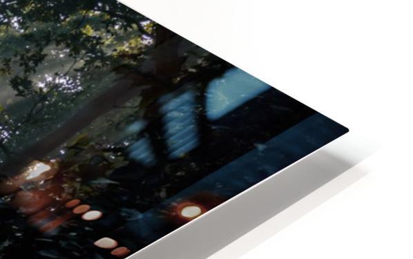 DSC_9742 HD Sublimation Metal print